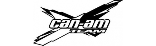 Can -Am (BRP)